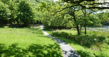 Footpath Around Llyn Gwernan from Cader Road