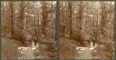 A Victorian Stereoscope of Torrent Walk